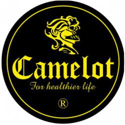CAMELOT INTERNATIONAL HEALTH ORGANIZATION